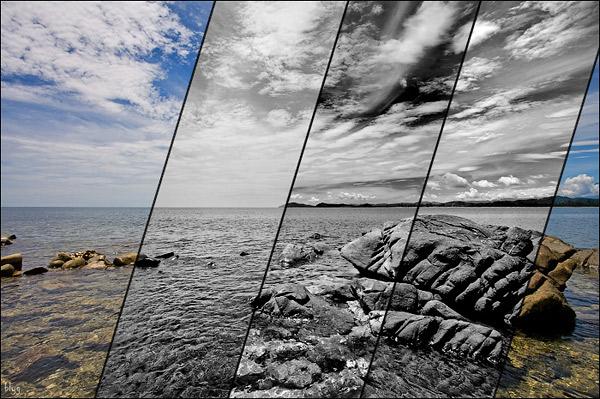 цветную фотографию в черно-белую фотографию